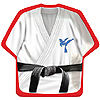 BLACK BELT KARATE BDAY DINNER PLATE PARTY SUPPLIES