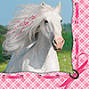 HEART MY HORSE BEVERAGE NAPKINS PARTY SUPPLIES