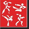 BLACK BELT KARATE BDAY LUNCH NAPKIN PARTY SUPPLIES