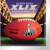 SUPER BOWL XLIX LUNCH NAPKIN PARTY SUPPLIES