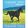 DISCONTINUED WILD HORSES THANK YOU FLD PARTY SUPPLIES