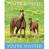 DISCONTINUED WILD HORSES INVITATION PARTY SUPPLIES