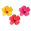 DISCONTINUED TROPICAL FLORAL DECORATION PARTY SUPPLIES