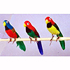 FEATHERED 6IN. PARROT (24/CASE) PARTY SUPPLIES