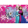 FROZEN SOUVENIR PLASTIC PLACEMAT  PARTY SUPPLIES