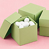 OLIVE 2 PIECE FAVOR BOXES PARTY SUPPLIES