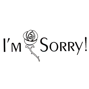 DISCONTINUED I'M SORRY RUBBER STAMP PARTY SUPPLIES