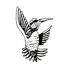 Click for larger picture of DISCONTINUED HUMMINGBIRD 1 RUBBER STAMP PARTY SUPPLIES