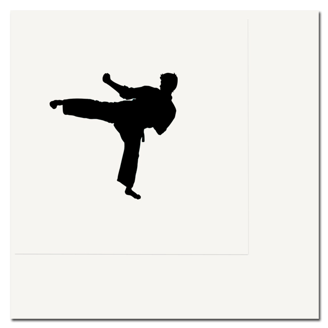 MARTIAL ARTS LUNCHEON NAPKIN PARTY SUPPLIES
