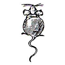 Click for larger picture of DISCONTINUED REAR VIEW MOUSE RBBR STAMP PARTY SUPPLIES