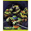 TEENAGE MUTANT TURTLES TREAT BAGS PARTY SUPPLIES