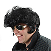 THE KINGS WIG ELVIS LOOK A LIKE  PARTY SUPPLIES