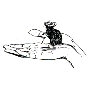 Click for larger picture of DISCONTINUED MOUSE IN HAND RUBBER STAMP PARTY SUPPLIES