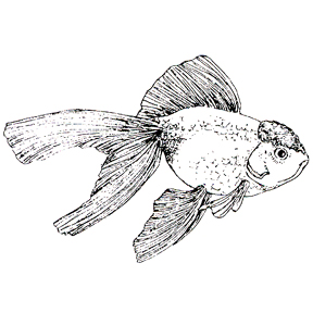 DISCONTINUED TROPICAL GOLDFISH  STAMP PARTY SUPPLIES