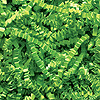 LIME GREEN CRINKLE CUT™ PAPER-10LB. PARTY SUPPLIES