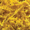 YELLOW CRINKLE CUT™ PAPER-10LB. PARTY SUPPLIES
